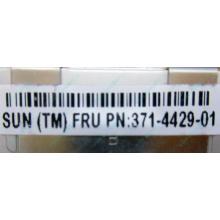 Серверная память SUN (FRU PN 371-4429-01) 4096Mb (4Gb) DDR3 ECC в Краснодаре, память для сервера SUN FRU P/N 371-4429-01 (Краснодар)